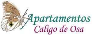 Caligo Apartments